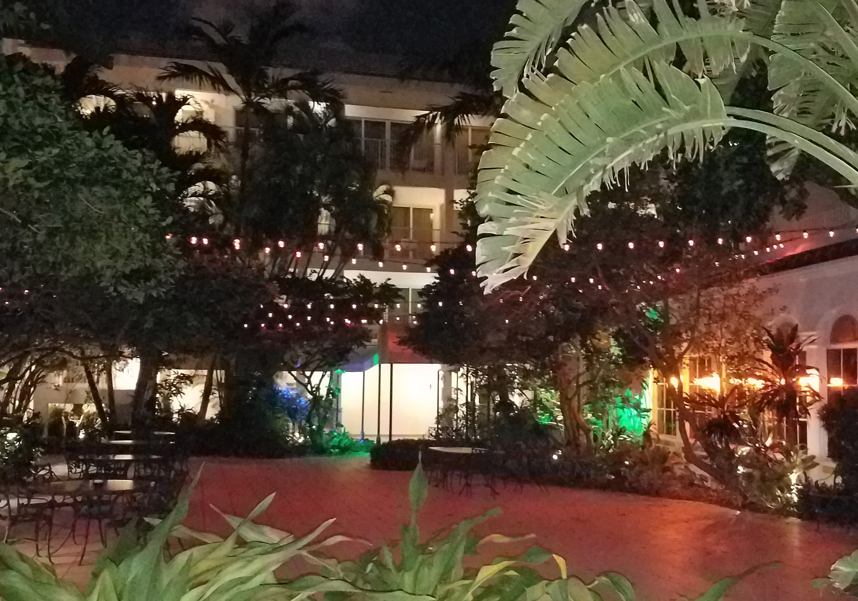 hibiscus court lights