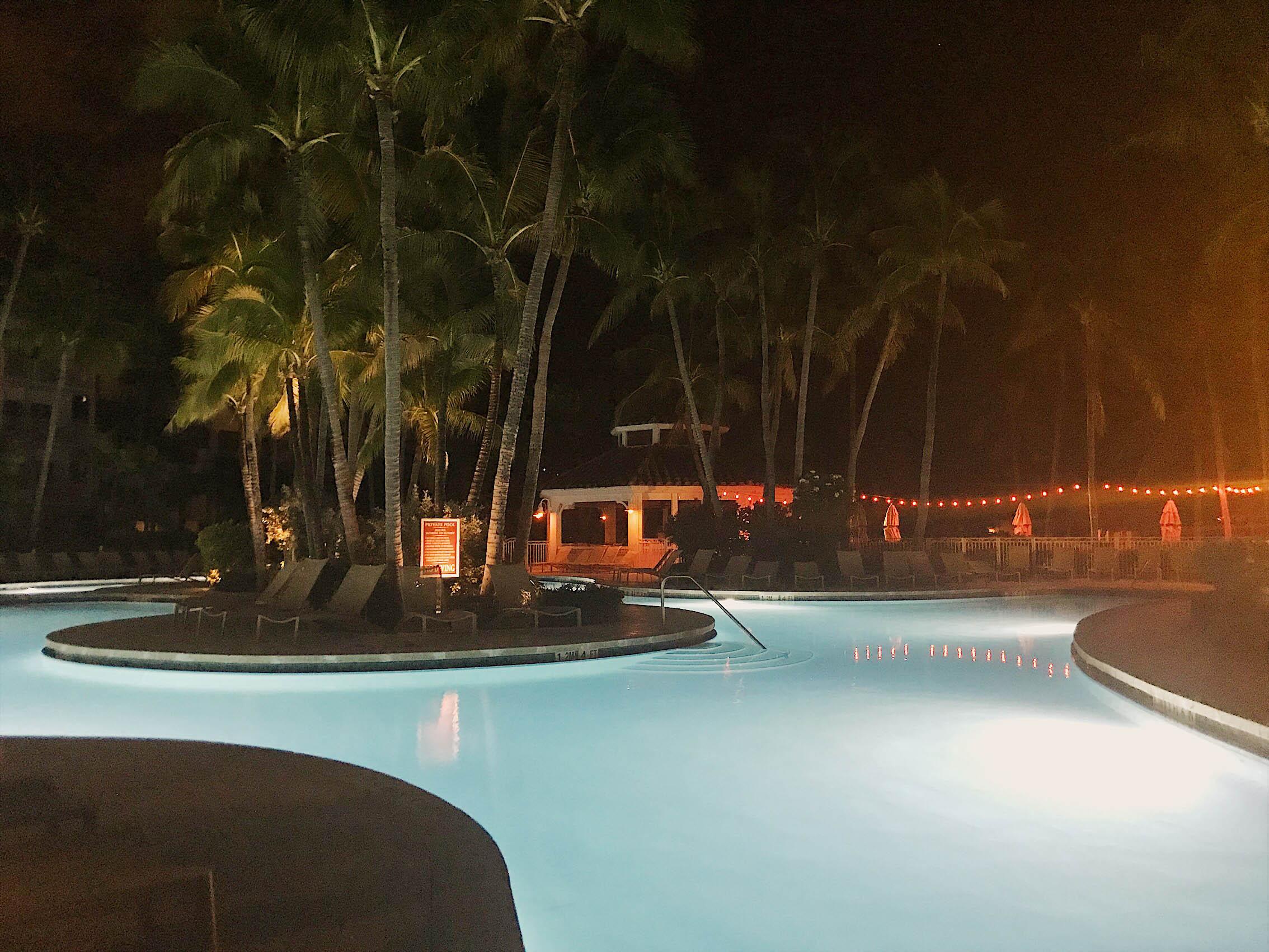 lagoon pool at night turtle lighting
