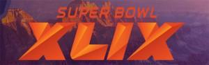 superbowl 49